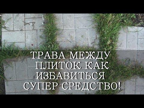 Как избавиться от травы на дорожках