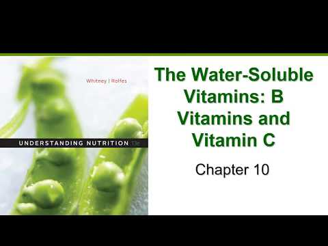 The Water Soluble Vitamins (Chapter 10)