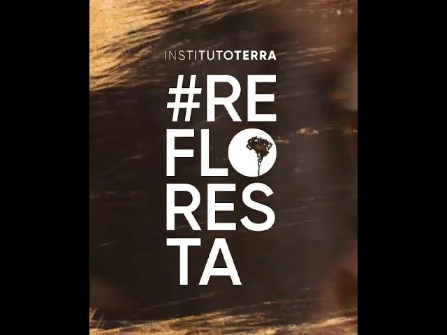 É hora de ser #Refloresta - Instituto Terra e Gilberto Gil no Fantástico!