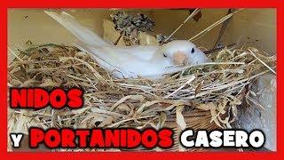 COMO HACER NIDOS para CANARIOS 🐤 COMO CONSTRUIR UN NIDO PARA LA CRIA DE CANARIOS Y JILGUEROS