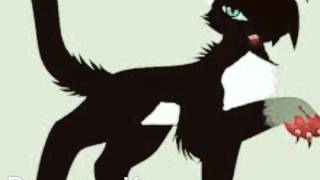 """Коты-Воители """"Бич и Лунный Коготь:КАроче"""""""