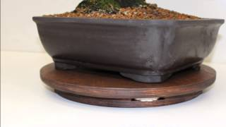 Tavolo Girevole per Bonsai