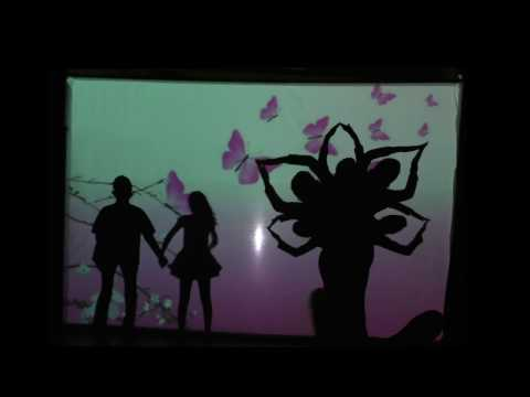 Omaha TSN Ugadi 2017-  Shadow dance