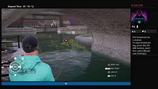 Hunting boss fish