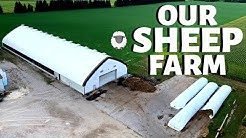 Welcome to our Sheep Farm (A TOUR OF OUR FARM 2020): Vlog 257