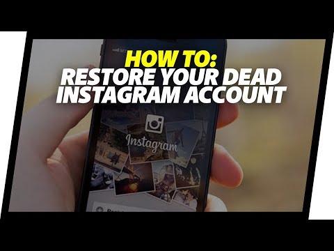 Dead Instagram Page Restoring & Black Friday Giveaway!