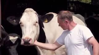 Cheesemaking at Doddington Dairy
