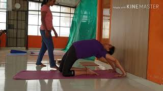 Kapotasana secrets !! Learn how to Learn; Learn how to Teach;