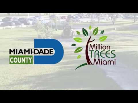 Million Trees Miami - Miami-Dade County