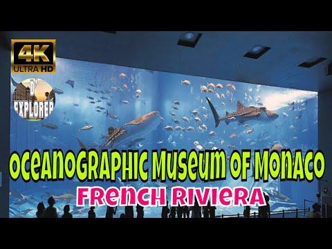 🇲🇨VISIT MONACO》Oceanographic Museum of Monaco(Musée océanographique de Monaco)2020 【4K】