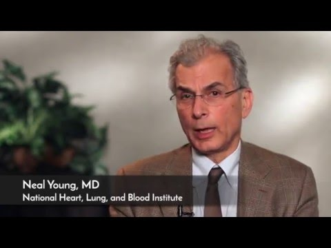 Cutting Edge Approaches to Aplastic Anemia Treatment