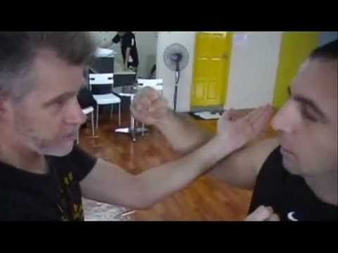 Martial Arts Odyssey: Wing Chun WSL (Part 2)