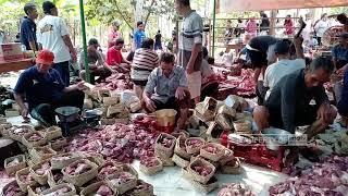 Jumlah Pekurban Di Mta Semarang Mengalami Peningkatan