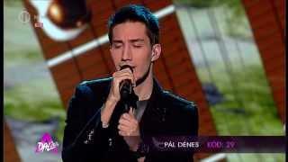 Pál Dénes: Brave New World -- A Dal 2014 döntő