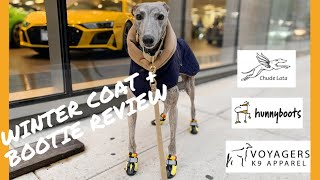 HOW TO KEEP YOUR DOG WARM IN WINTER | BEST WINTER COATS AND SHOES / BOOTIES | GREYHOUND WINTER COATS