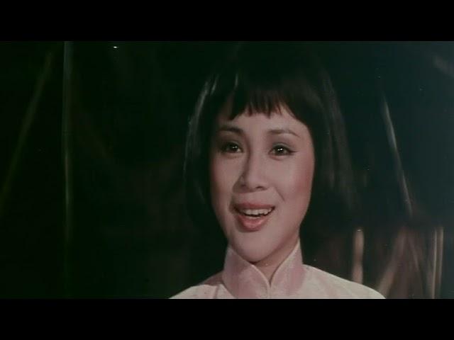 The Double Double Crosser (Taiwan 1977) aka Da jiang nan bei /with WANG YU /EASTERN TRAILER ENGLISCH