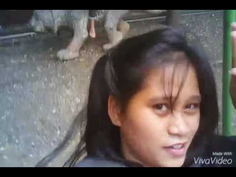 Vlog # 29 San Pedro Street Galore