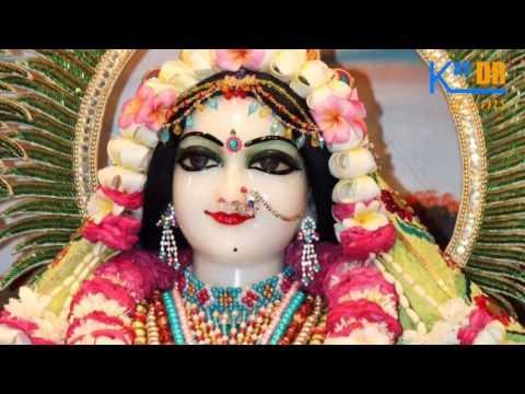 Teri Radha Pyari || Nitin Vaishnav || Live 2017