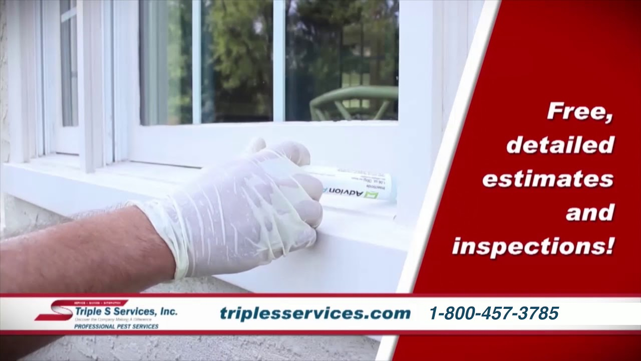Pest Control Insect And Rodent In Va Md Dc Triple S Services