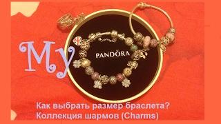 2017  PANDORA | Пандора оригинальный браслет. ♥ Обзор  ♥ Как выбрать размер? ♥ Коллекция шармов(, 2017-02-18T11:07:11.000Z)