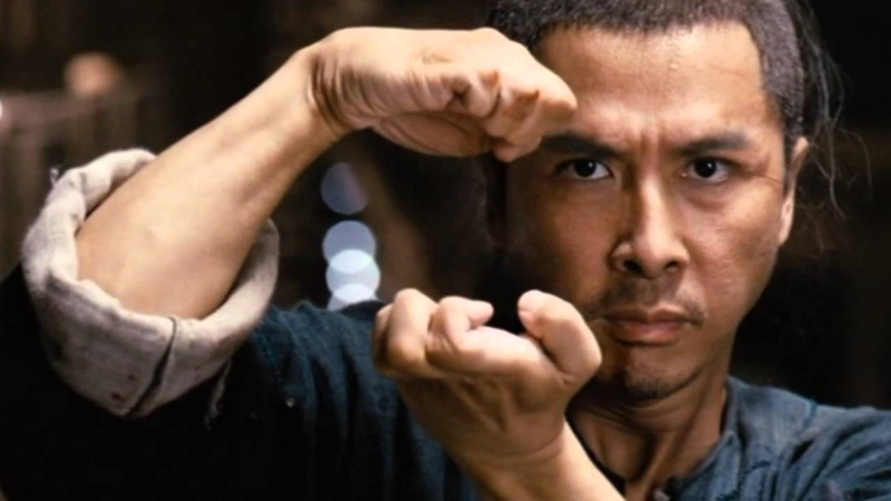 donnie yen young