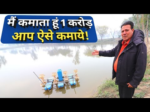 How To Start Fish Farming In India|Investment Profit Beginner Tips By Sultan Fish Farm