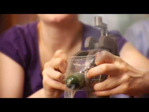 Dangerous Condom Applicator from YouTube · Duration:  1 minutes 34 seconds
