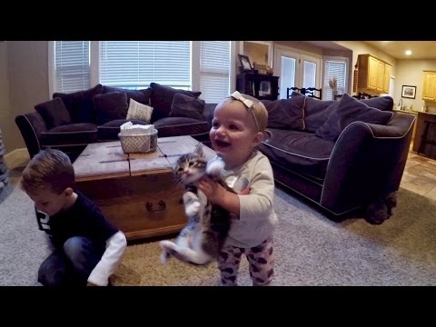 LITTLE KIDS PLAY WITH KITTENS FOR THE FIRST TIME