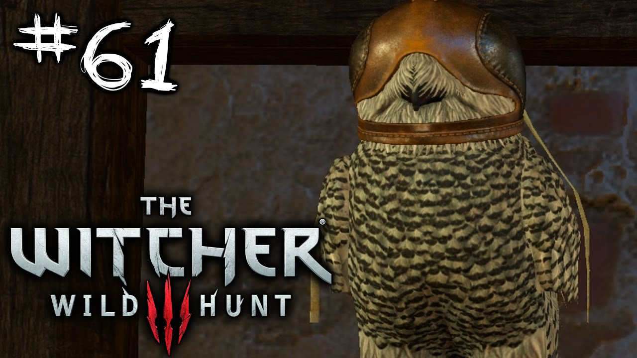 Owl The Witcher 3 Wild Hunt Pc Playthrough Part 61 Youtube