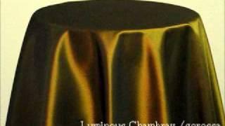 ルミナスシャンブレー/グォロッサ SSB1030W(ツイル) color : ブラウ...