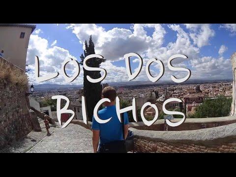 Los Dos Bichos - Chapitre 2 : A la recherche du bateau