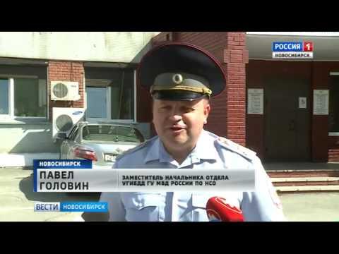 Ярмарку вакансий открыли в Новосибирском управлении ГИБДД