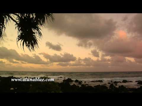 Stock Footage - Stock Video - Video Backgrounds - Tropical 0101
