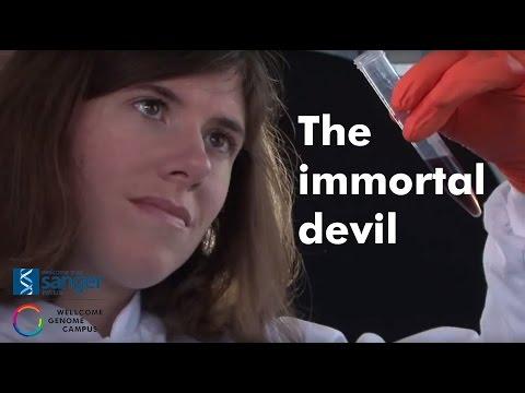 The Immortal Devil - Sanger Institute