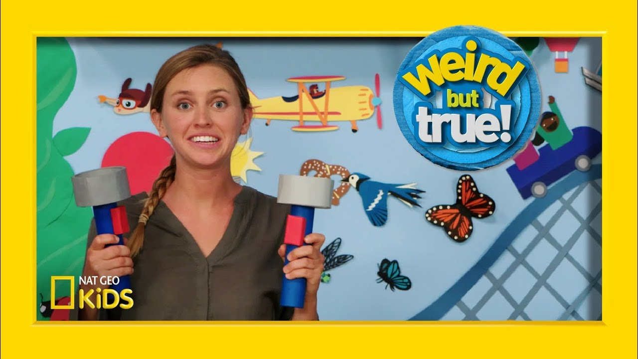 "Behind the Scenes: Plane Episode From ""Weird But True!"" 