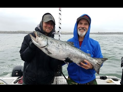 Chinook and Coho Salmon Fishing in Tillamook Bay