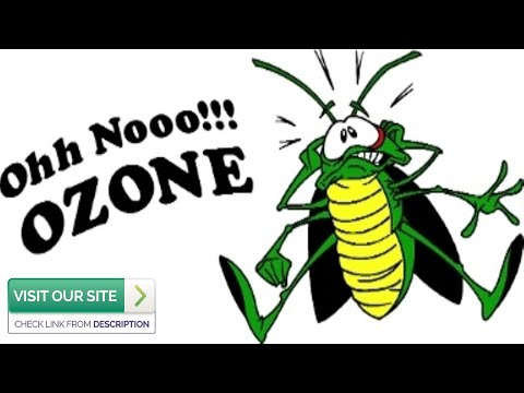 Expert Pest Control Gold Canyon AZ: 3 Top Pests Of 2019 (480-493-5028) Ozone Pest Control