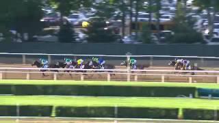 American Pharoah wins the Triple Crown 2015 Belmont Stakes