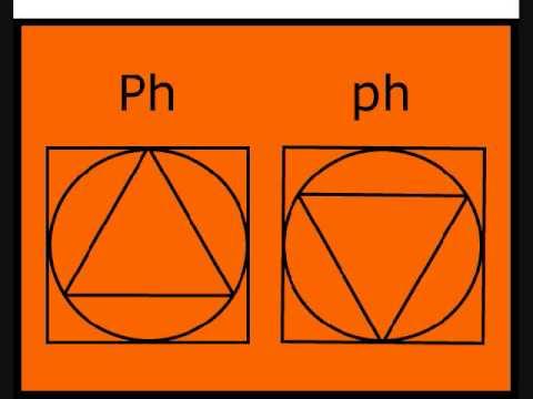 Free Pictographic Alphabet With 73 Symbols