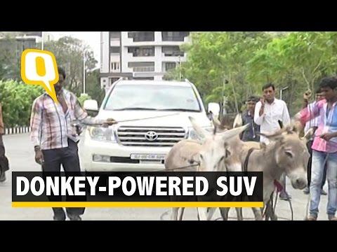 Donkey Power Runs a Businessman's Land Cruiser in Surat