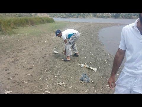 fishing in pakistan T.M Fishing Club