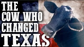 The Cow Who Changed Texas Forever | Rowdy Girl