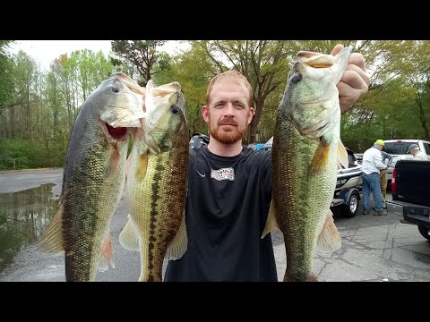 Did I Win The Bass Tournament (Lake Norman)