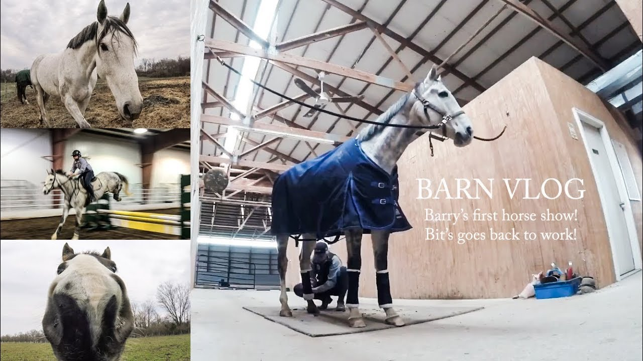 BARN VLOG/SCHOOLING AT THE HORSE SHOW
