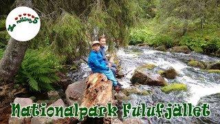 Nationalpark Fulufjället   Wasserfall   Shelter