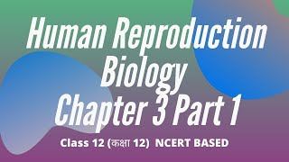 Human Reproduction Biology Chapter 3 12th class Part 1