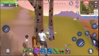 roblox random games pet give away