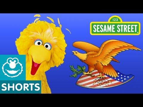 Sesame Street: The National Bird