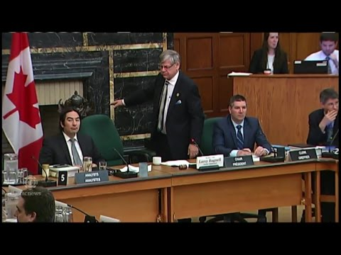 WARNING GRAPHIC LANGUAGE: Conservative MP outraged after Liberal chair adjourns committee meeting