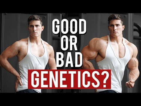 How Good are your Genetics for Muscle Gain | Vitruvian Model of Genetics
